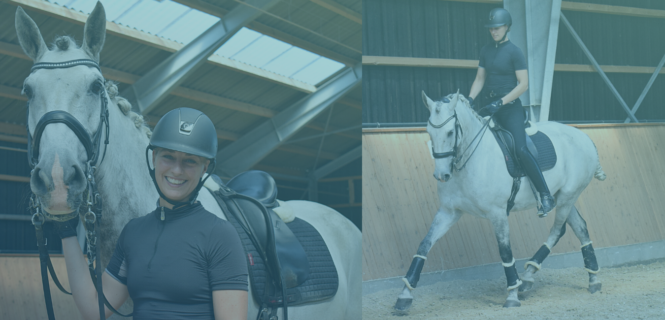 Videoserie om Working Equitation LIVE NU!